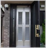 玄関網戸 戸建タイプカラー:ステンカラー